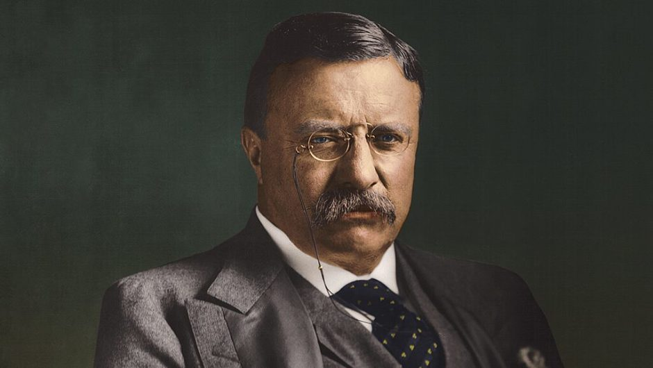Newt Gingrich: To deal with coronavirus crisis, what can we learn from Teddy Roosevelt?