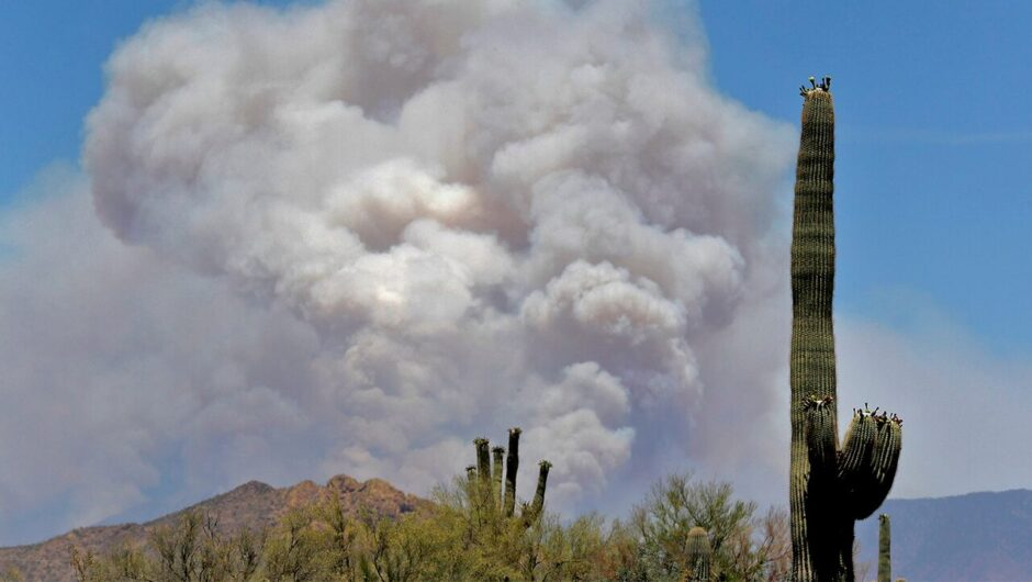 Firefighters face new challenges, concerns heading into wildfire season amid coronavirus pandemic
