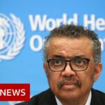 Coronavirus: Nations heading in wrong direction with Covid-19, says WHO – BBC News